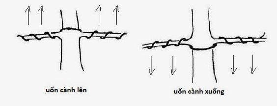 Phương pháp quấn dây
