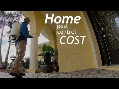 How Much Does It Cost To Get Pest Control Out