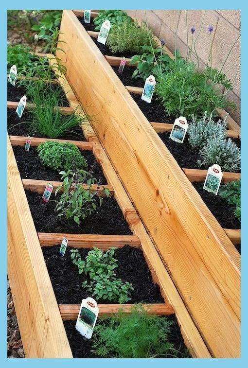 Container Herb Gardens Herb Garden Ideas In 2020 Small Vegetable Gardens Backyard Vegetable Gardens Vegetable Garden Design