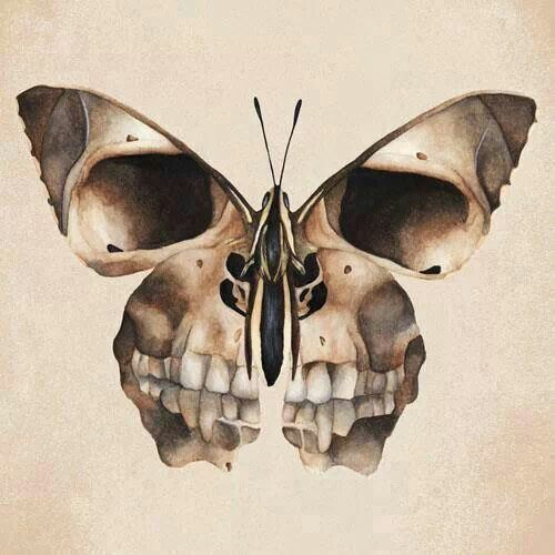 butterfly skull frame picture and hang inside a witch 39 s cabin halloween witch pinterest. Black Bedroom Furniture Sets. Home Design Ideas