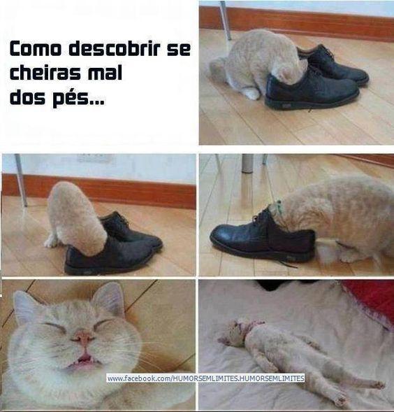 Procura-se a bota da minha filha…  Veja mais em: http://www.jacaesta.com/procura-se-a-bota-da-minha-filha/