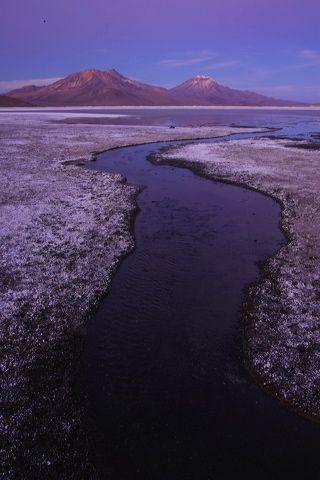 CHILE ---- Salar con los cerros Arintica (5.597 m) y Puquintica (5.780 m) Monumento Natural Salar de Surire, Altiplano andino, Los Andes, Norte Grande, Chile Salar at dusk with Cerro Arintica (5597 m) and Cerro Puquintica (5780 m) at Monumento Natural Salar de Surire, Andean Altiplano, Andes, Norte Grande, Chile