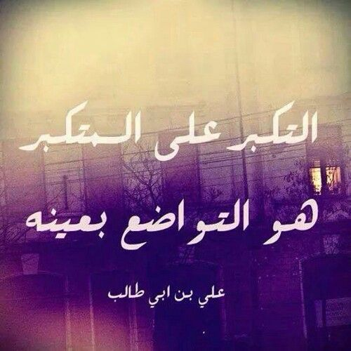 صور حكم الامام علي اقوال الامام علي Ali Quotes Proverbs Quotes Funny Arabic Quotes