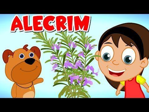 Alecrim Dourado Musicas Infants Musicas De Ninar Youtube