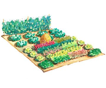 Large scale vegetable garden plan gardens garden for Large vegetable garden plans