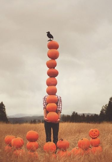 stacked pumpkin