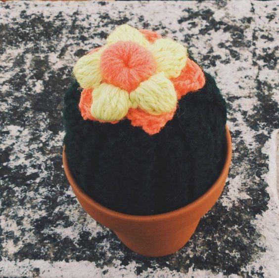 Cactus un Brazo
