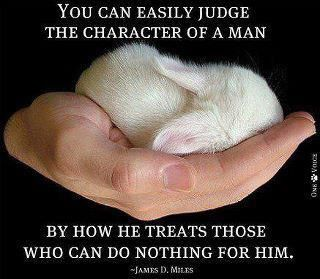 Please support the humane treatment of animals!!