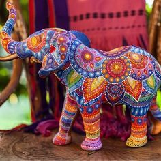 Beautiful elephant!