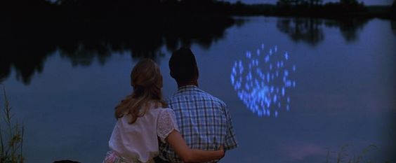 ''Me and Jenny goes together like peas and carrots.'' ~Forrest Gump