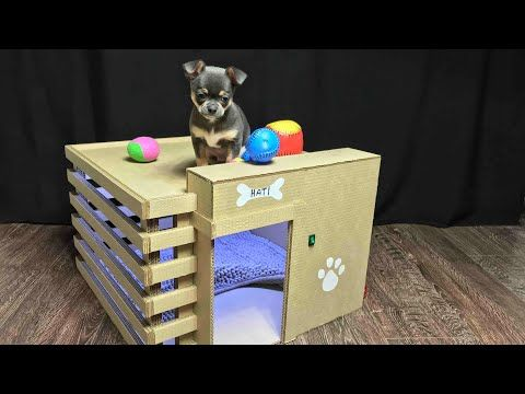 Youtube How To Naje Amazing Doggie Houses From Cardboard Dog