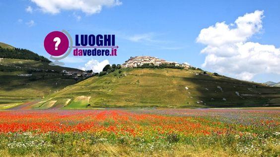 La #Fioritura di #Castelluccio di #Norcia: uno spettacolo naturale senza eguali  #Umbria #travelblog #travelblogger #Italia
