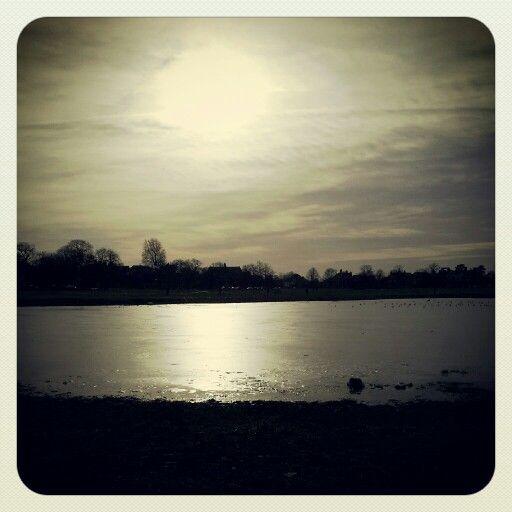 Rushmere Pond, Wimbledon