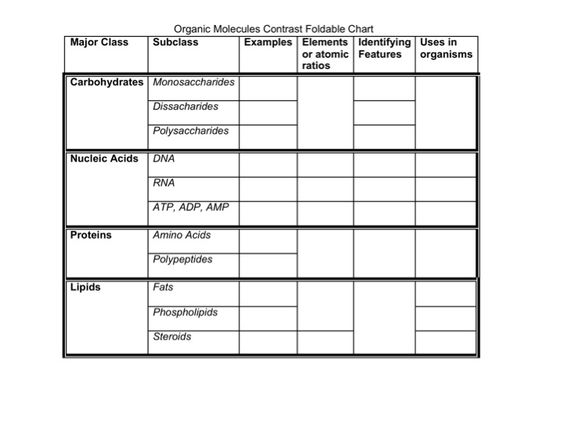 Oil Filter Cross Reference Chart  Resume Template Sample