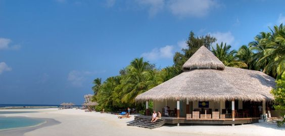 Chaaya Reef  Ellaidhoo Resort, Maldives. With your Glob Metropoliten Tours - from $121 per person/night HB - dnevni polupansion po osobi u dvokrevetnoj sobi  Source: http://www.maldivesbuzz.com/