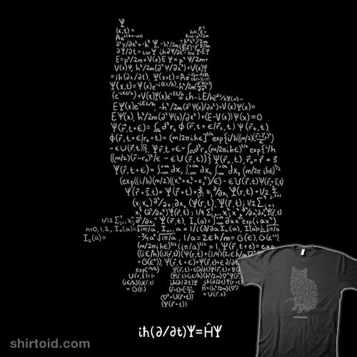 Schrodinger's cat/equation shirt! i so would buy this if I ...