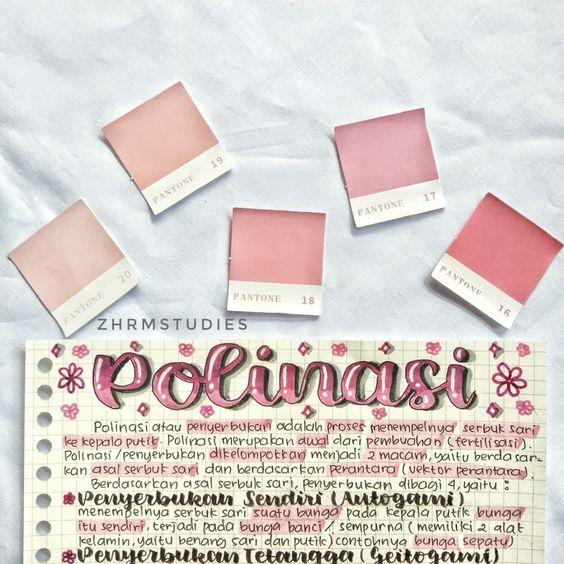 Studygram Indonesia Aesthetic Notes Notes Blush