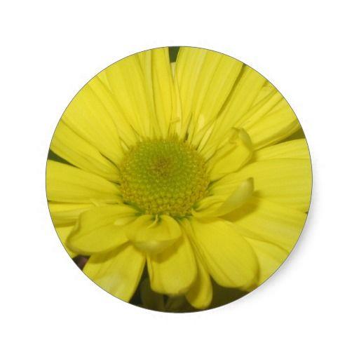 Yellow Daisy Stickers