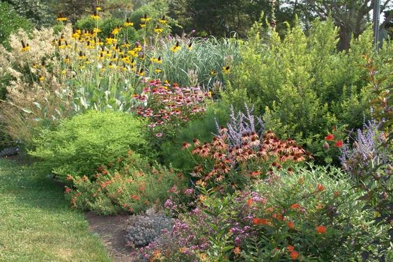 Low maintenance planting design more than just plant for Low maintenance plants shrubs