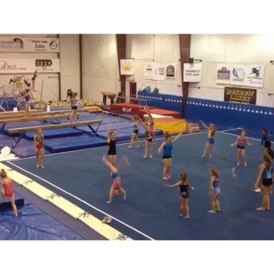 Gymnastics VINES
