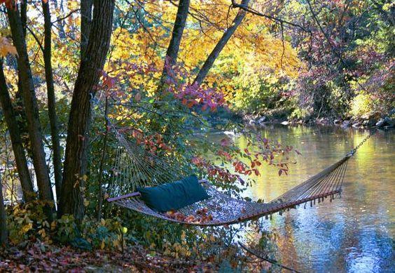 autumn hammock
