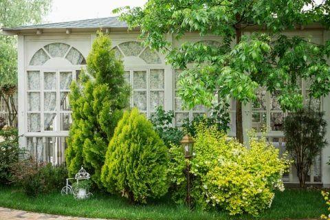 庭木 植木 の育て方 植え方や肥料などの手入れ 伐採方法は 庭 木