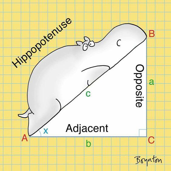 Hippo Pythagorean