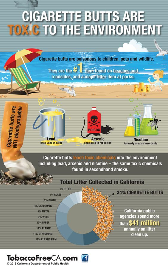 effects of plastic waste on the environment pdf