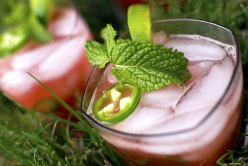 Watermelon jalapeño cocktail: Summer Cocktails, Summer Drink Recipes, Jalapeno Cooler, Cocktails Drinks, Food Drink, Summer Coolers, Refreshing Summer Drinks
