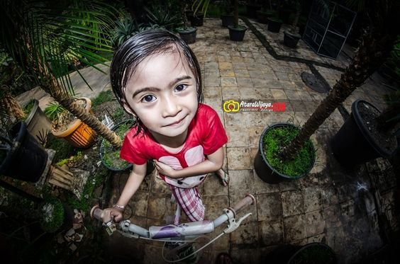 Look with Fish Eye