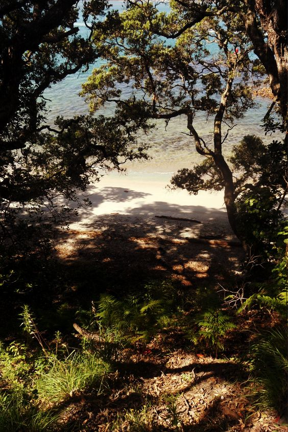 Mount Maunganui, Bay Of Plenty NZ