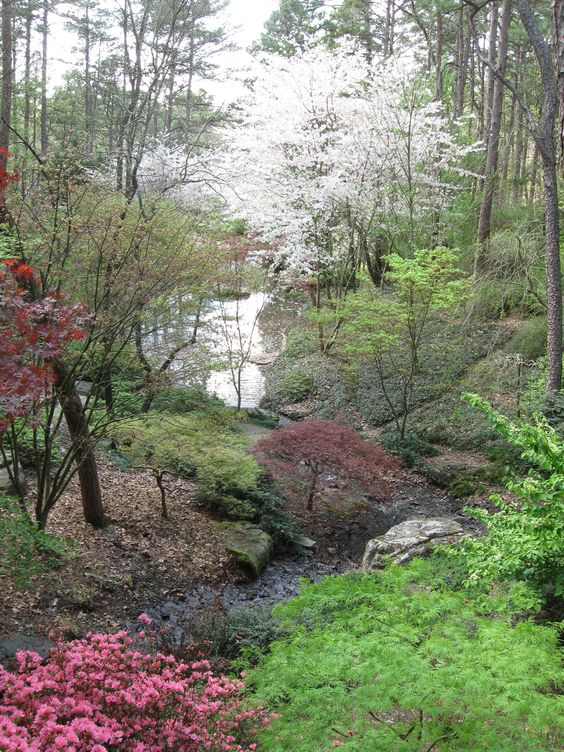 Woodland Garden Hot Springs And Spring It On Pinterest