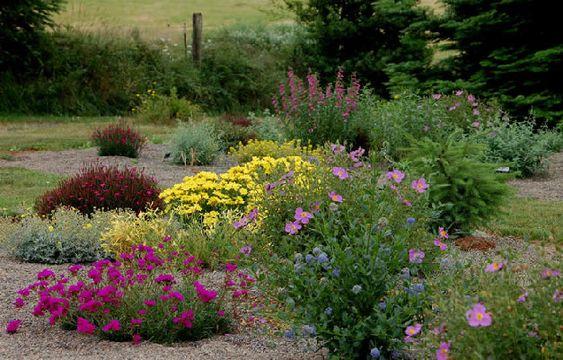 desert landscaping ideas high desert flower garden desert