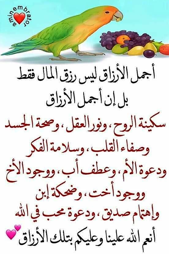 Pin By The Noble Quran On I Love Allah Quran Islam The Prophet Miracles Hadith Heaven Prophets Faith Prayer Dua حكم وعبر احاديث الله اسلام قرآن دعاء Good Morning Quotes Quran Verses