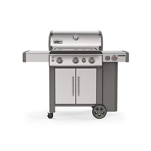 5 Weber Genesis Grill Reviews 2020 Compare Top Model In 2020 Propane Gas Grill Gas Grill Propane Grill