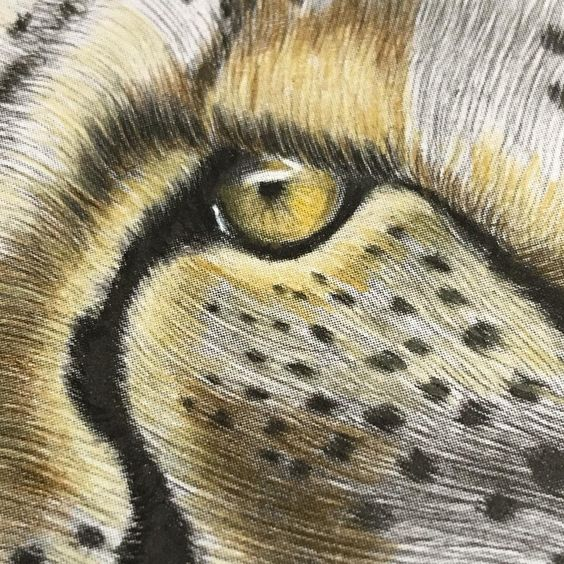 """Jo on Instagram: """"Cheetah close up from #intricateinkanimalsindetail  coloured by me"""""""
