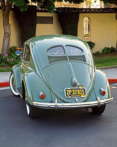 Vw bugs window and vw beetles on pinterest for 1951 volkswagen split window