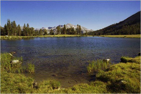 Yosemite NP - California, USA