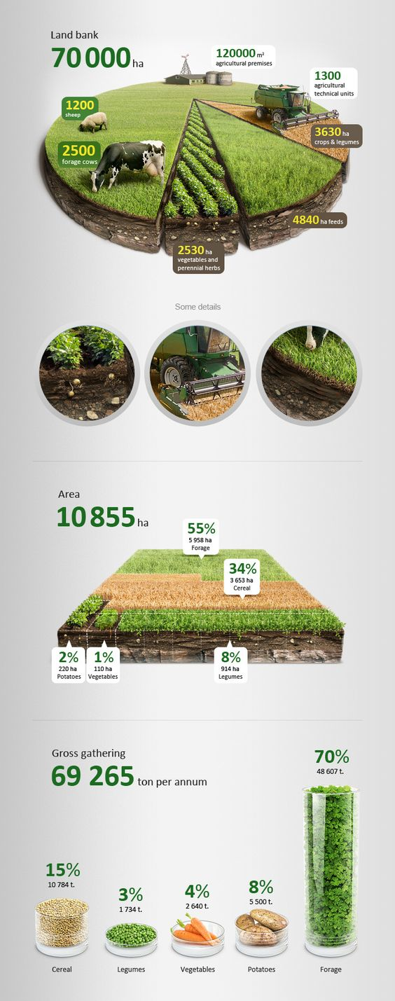 Agricultural infographics  http://www.behance.net/gallery/Agricultural-infographics/6659287