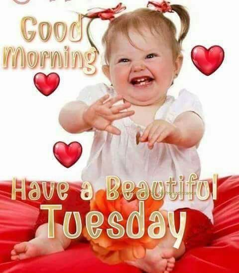 Happy Baby Good Morning Tuesday Image Tuesday Tuesday Quotes Tuesday Gif Tuesday Images G Good Morning Tuesday Good Morning Images Good Morning Tuesday Images