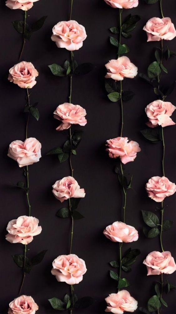 Pink Roses In Vertical Columns Phone Wallpaper Lock Screen