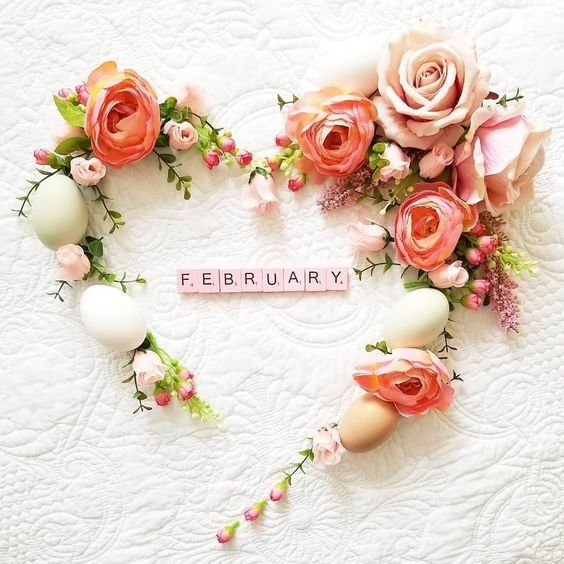 Happy February  Ff87b3e411eb0182cf0cea83c483274b