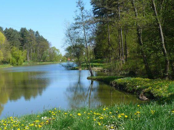 Tamási tó