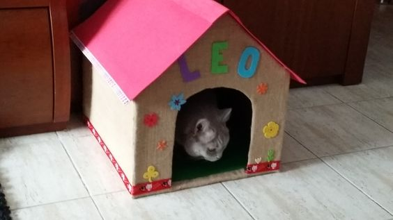 Casa de gato finalizada