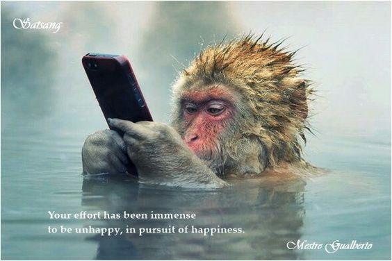 Seu esforço tem sido imenso para ser infeliz, ao buscar a felicidade. Satsang com Mestre Gualberto
