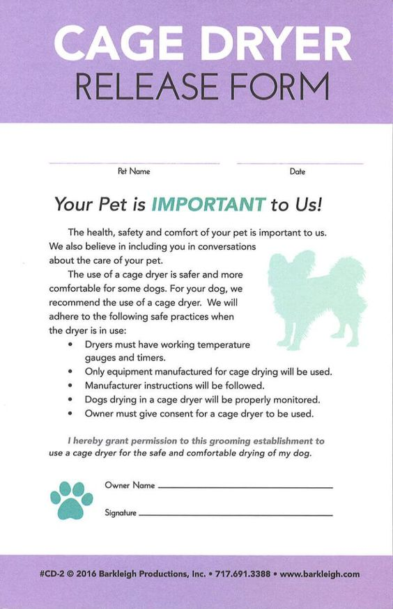 Modern - Matted Pet Release Form Groomer ideas Pinterest - accident release form
