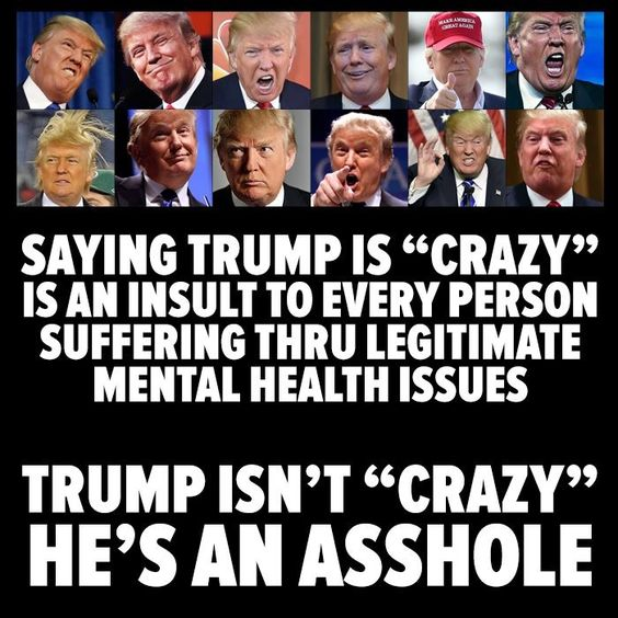 But a sociopathic, narcissistic asshole. That counts, right?   He has a poorly developed (immature) prefrontal cortex resulting in immaturity, narcissistic & hysterical personality disorders, and poor impulse control. In lay terms he's an angry baby who's primary weakness is his intense desire to be admired. That's why he is a bully, insecure, even he knows he is a fraud.: