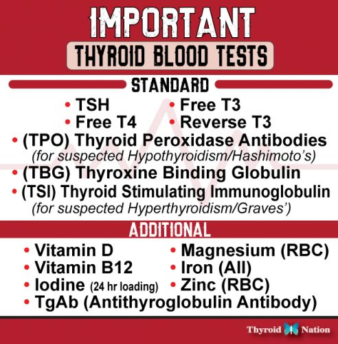 die besten 25+ thyroid test ideen auf pinterest   hypothyreose
