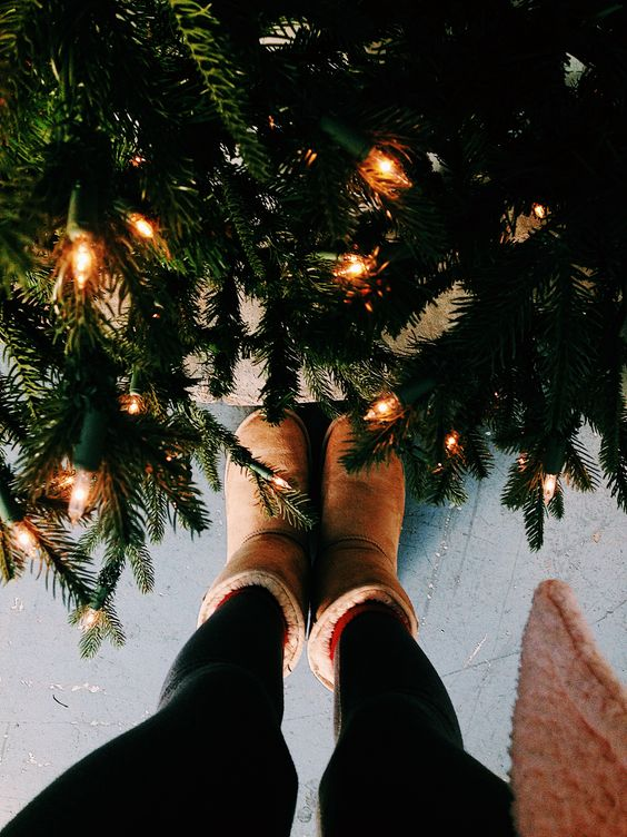 🌟Under the Christmas Tree 🎄
