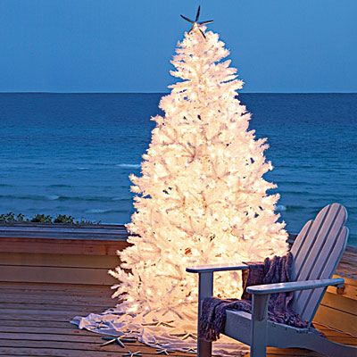 Amy i found the perfect tree for u......on the beach!!!!! Outdoor Christmas Tree with White Lights.  Set up next to outdoor seating area on the deck.  Make sure to have blankets & pillows.  For beach or coastal area could use starfish for the star on top of the tree and/or for decorations.